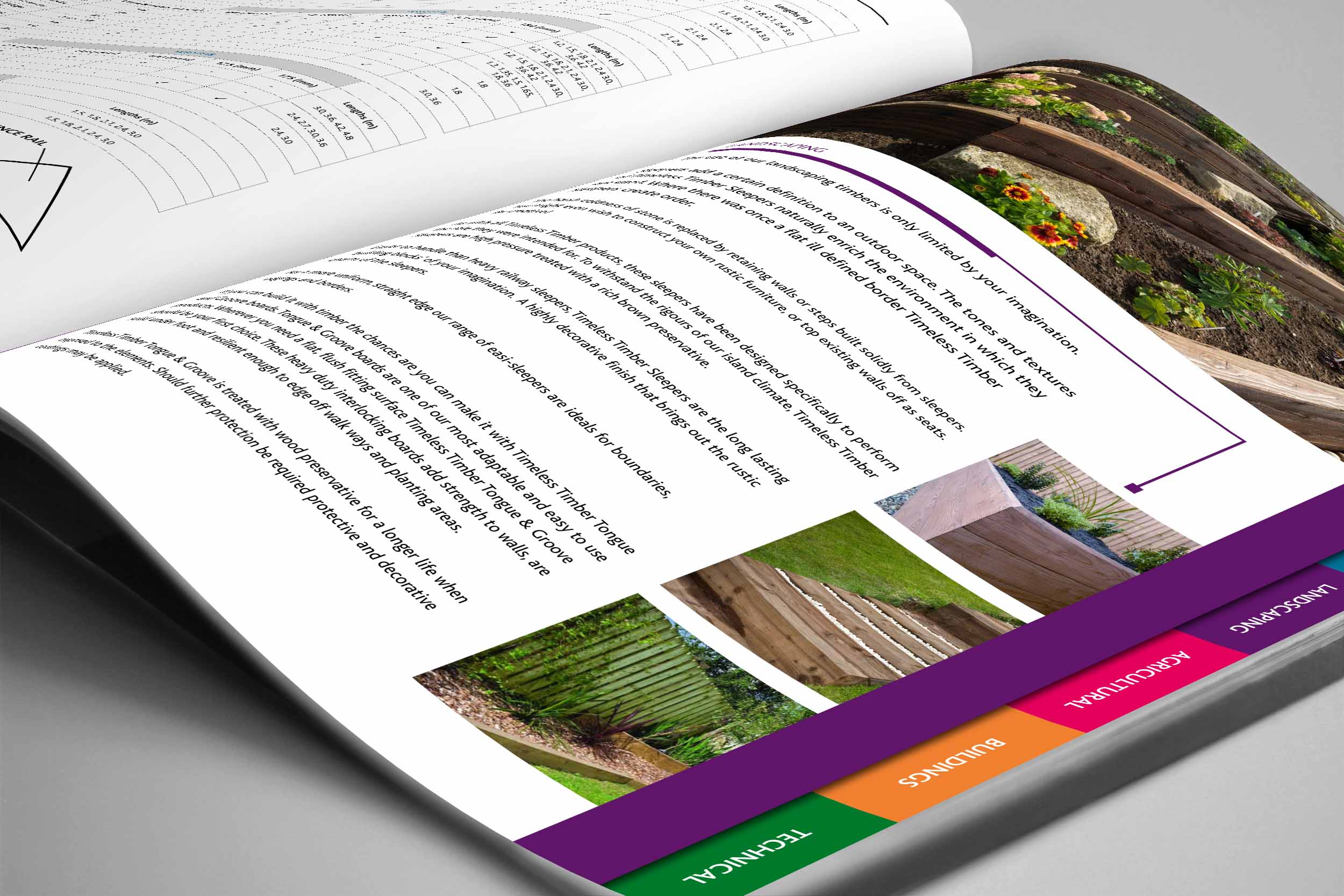 Design – BSW Timber Corporate Brochure