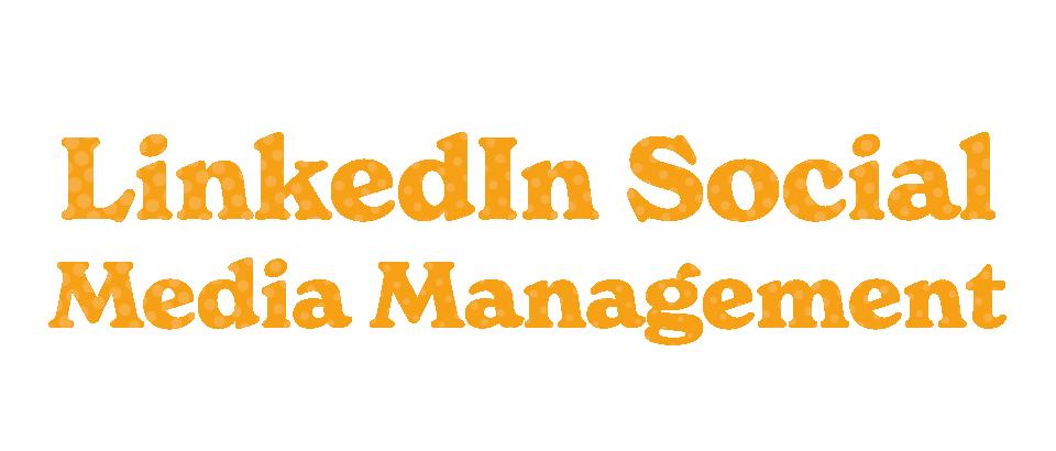 LinkedIn Social Media Title
